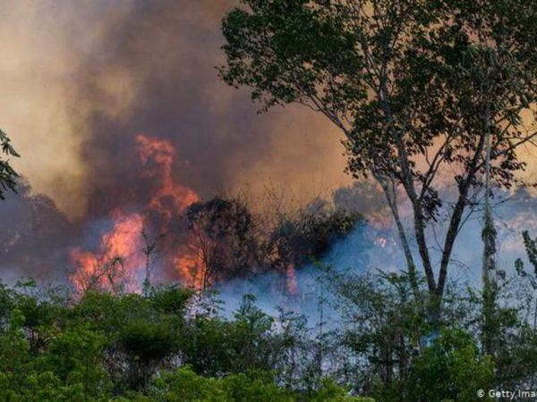 incendio Amazonía