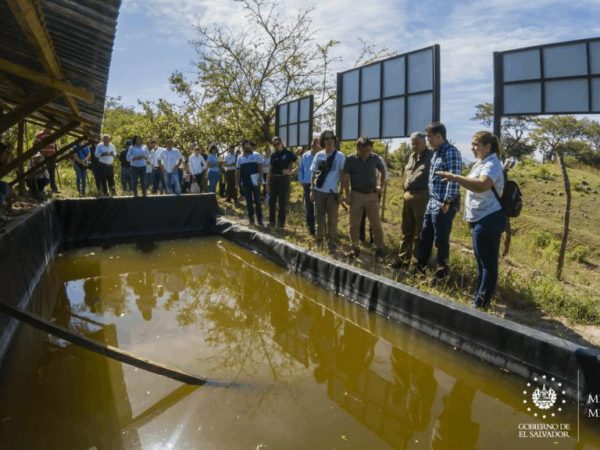 proyecto ecosistema San Miguel